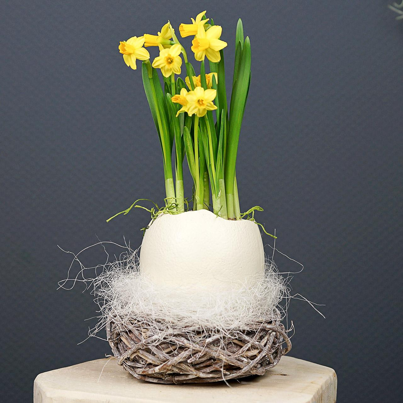 Easter basket made of twigs, natural, washed white Ø13cm 3pcs