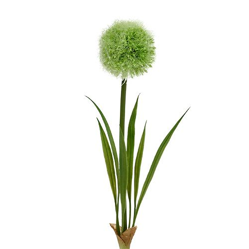 Allium Green L37,5cm 4pcs