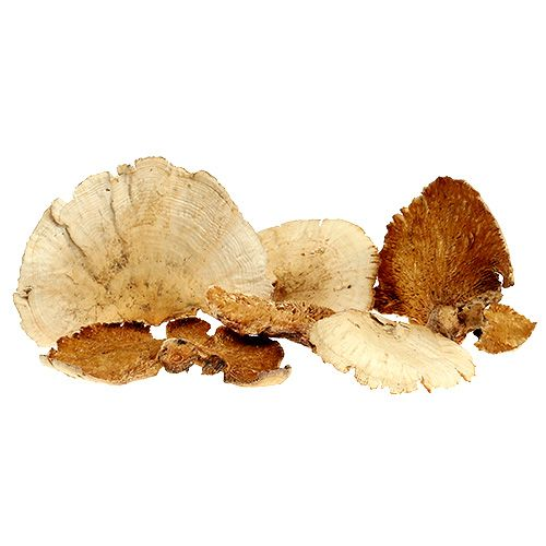 Tree sponge bleached 1kg
