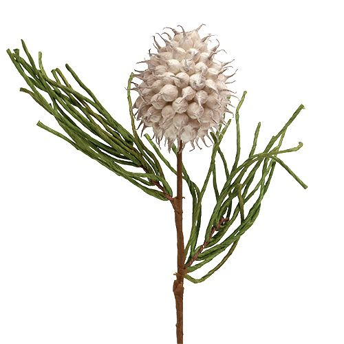 Flowering branch Foam Gray / Green 65cm