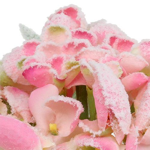 Hydrangea Pink snowed 33cm 4pcs