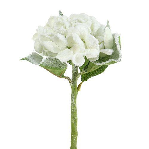 Hydrangea White snowed 33cm 4pcs