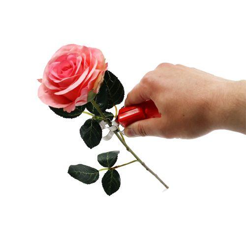 Rose Thorn Stripper