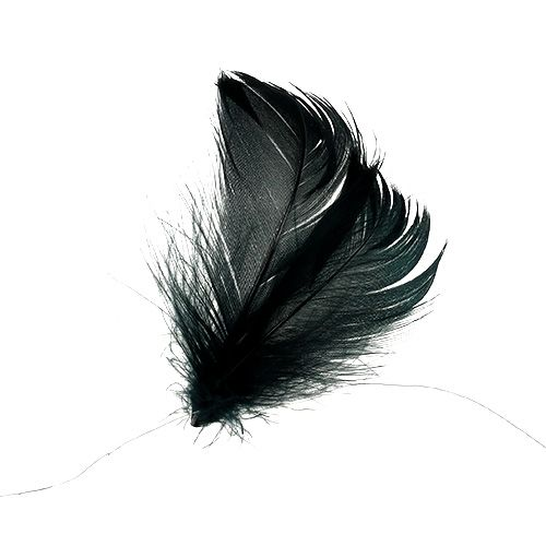 Feathers on wire Black 10m