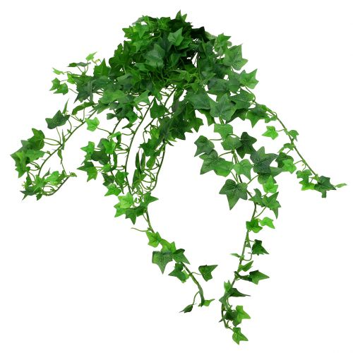 ivyhanger green 60cm