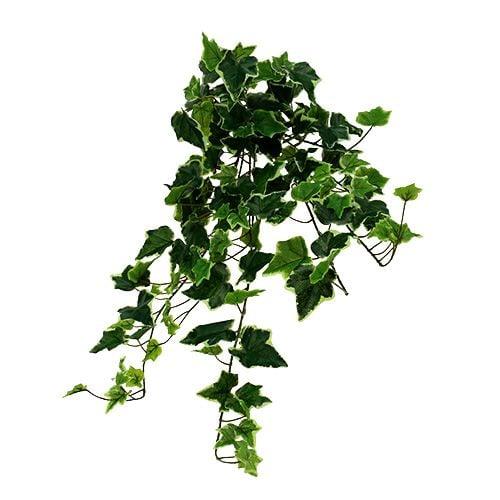 Efeuhänger white-green 70cm