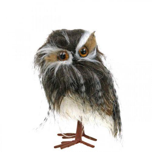 Winter decoration, decoration owl, tawny owl, autumn H16cm