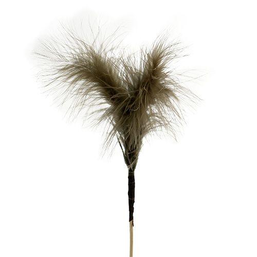 Feathers on sticks Brown 30cm 12pcs