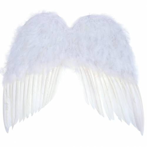 White feather wings 55x52cm