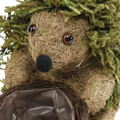 Hedgehog with green basket, autumn decoration for planting, decorative planting basket H24cm Ø9.5cm