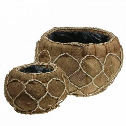 Planter coconut natural Ø37 / 24cm, set of 2