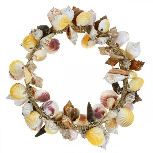 Decorative wreath shells and snails nature Maritime decoration Ø30cm