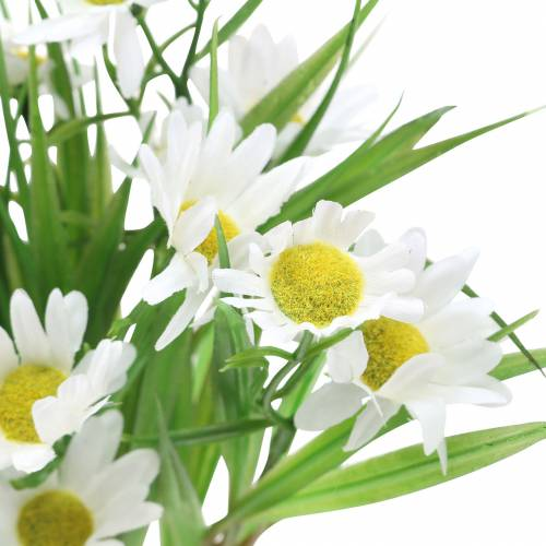 Ox-eye daisy bouquet with decorative grass 37cm