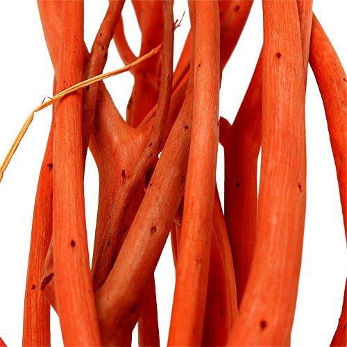 Mitsumata branches Orange 34-60cm 12pcs