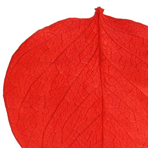 Monetablate Red 50g