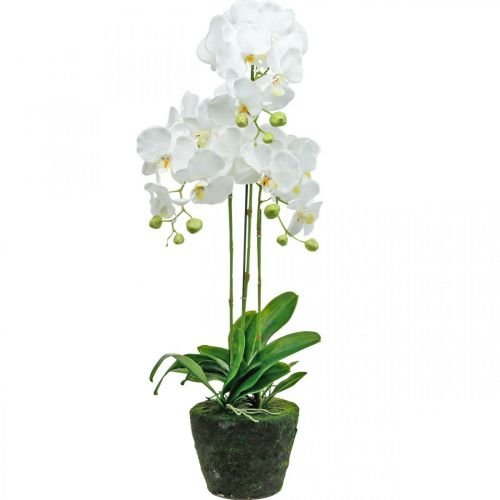 Artificial orchids for the white pot 80cm