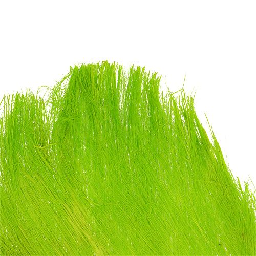 Palm fiber pastel light green 400gr