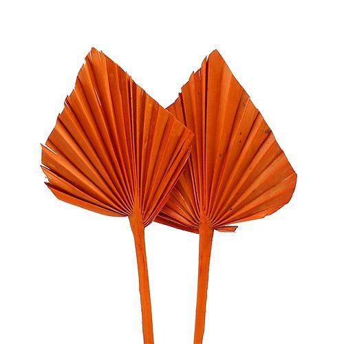Palmspear mini orange 100pcs