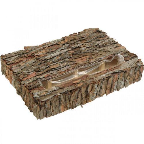 Plant container pine bark autumn decoration underlay 35 × 25cm H6cm