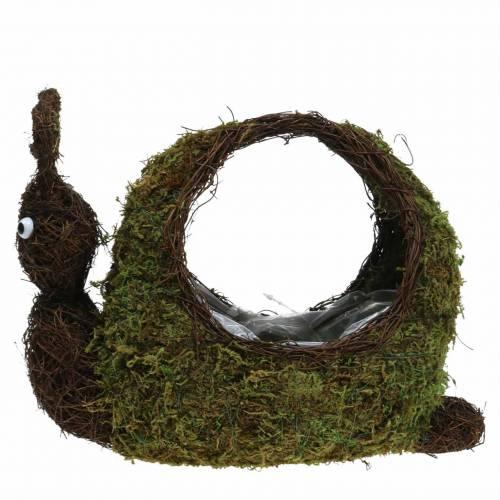 Plant basket snail moss brown 29x13cm H23cm