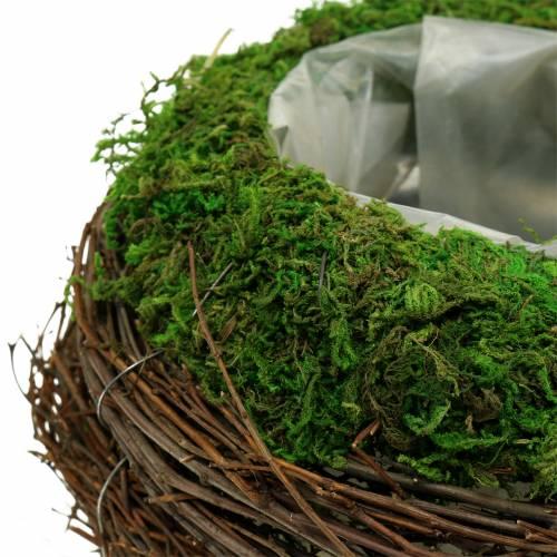 Planter bowl rattan, moss Ø19cm H13cm