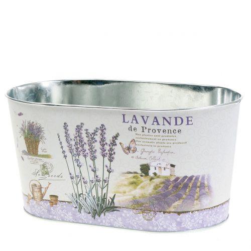 Planter Lavender oval 22,5cm x 13,5cm H11cm