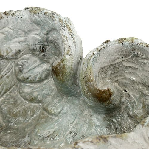 Plug shell heart shape 15cm x 13cm H8cm