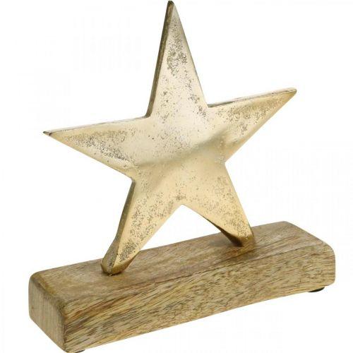 Decoration star, metal decoration on mango wood, Advent decoration W15cm