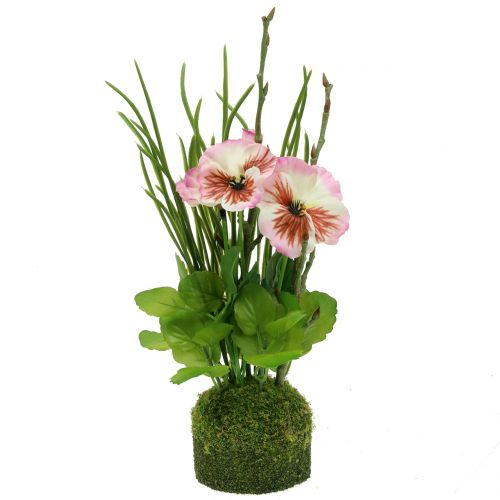Pansy with mossballs Rosa 31cm