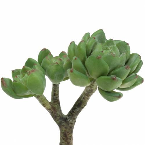 Succulent Echeveria artificial green H15cm