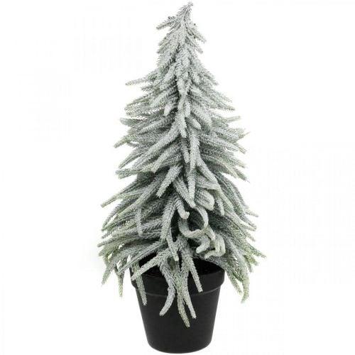 Winter fir in a pot, Christmas decoration, fir tree with snow H45cm