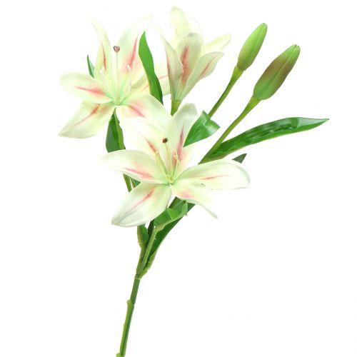 Tiger lily cream 60cm