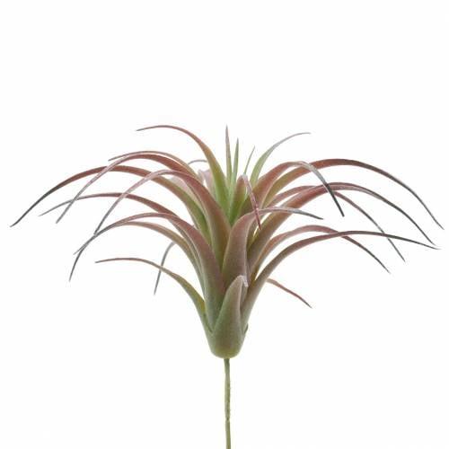 Tillandsia green-red flocked 15cm 4pcs