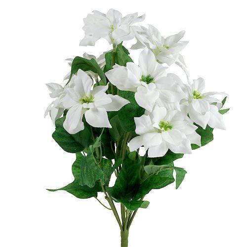 Poinsettia Bouquet White L45cm