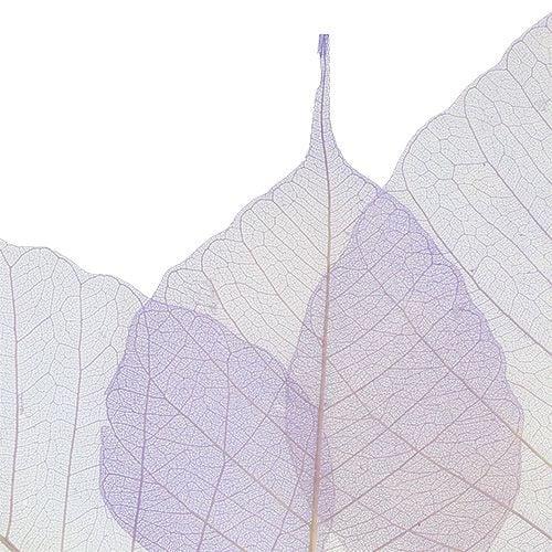 Willow leaves skeletonized light purple 200pcs.