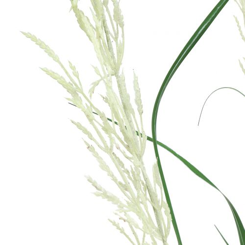 Ornamental Grass Pampas Grass with Frond Green / Créme H107cm