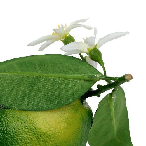 Lemons with flower 9,5cm green 4pcs