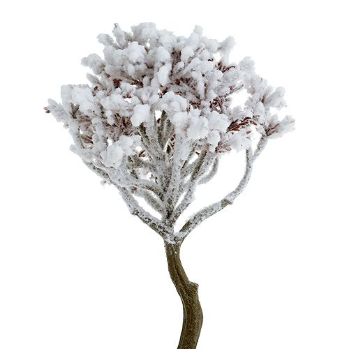 Branch with snow 22cm 3pcs