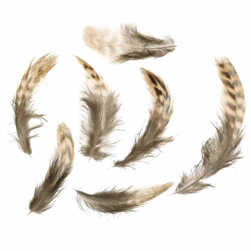 Natural feathers 4.5 - 9cm 20g