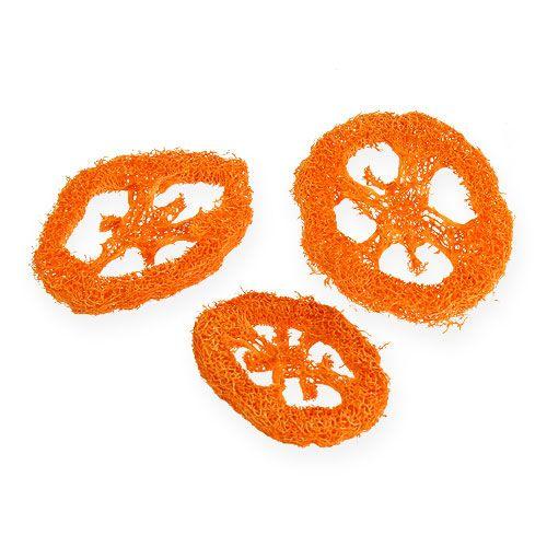 Loofah slices orange 25p