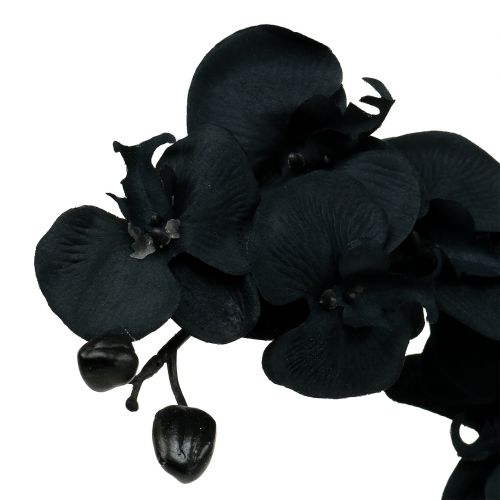 Orchid for decorating Black 54cm