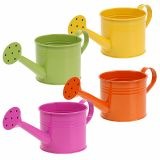 Watering Can Mix Ø11cm H9,5cm 8pcs