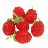 Raspberry 4cm x 2cm 36pcs