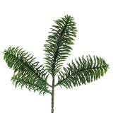 Nobilis fir branch artificial green 24cm 12pcs