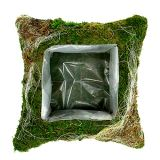 Pillow Moss 25cm x 25cm 2pcs