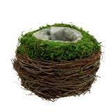 Planting bowl rattan, moss Ø16cm H11cm