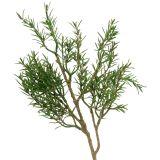 Rosemary branch 36cm 3pcs
