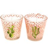 Wax candle in glass cactus Ø6,5cm 2pcs