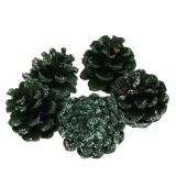 Pine cones green iced 200g