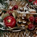 Christmas wreath with decorative fruits snowed Ø33cm